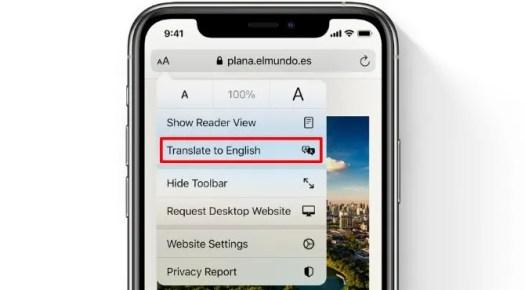 Safari Translate option on iPhone
