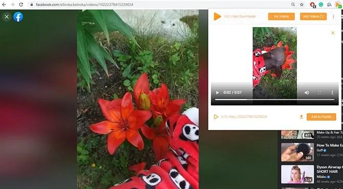 VLC видео загрузчик обнаружил видео