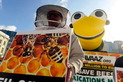 Une campagne de l'ONG Avaaz a récolté plus de deux millions de signatures pour «sauver nos abeilles». ©Avaaz