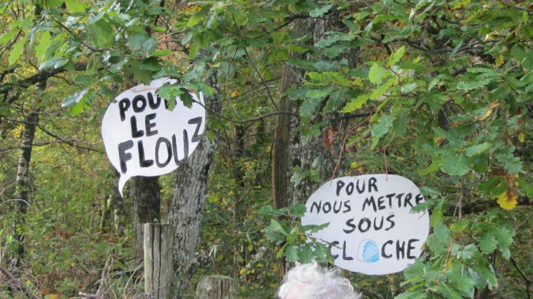 Manifestation contre le Center Parcs de Roybon (Isère), 20 octobre 2014 (Pcscp).