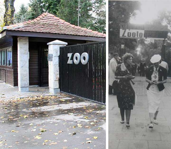 Image result for photo of the warsaw zoo during wwii
