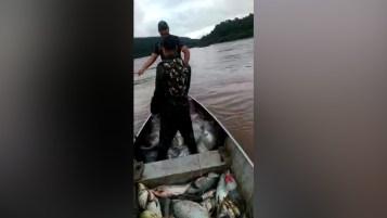 Camuflados bajo falsos uniformes oficiales, pescadores furtivos brasileños depredaban en el río Uruguay en un área cercana a los Saltos del Moconá