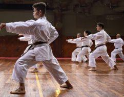 La Federación Misionera de Karate Do realizará un nuevo curso