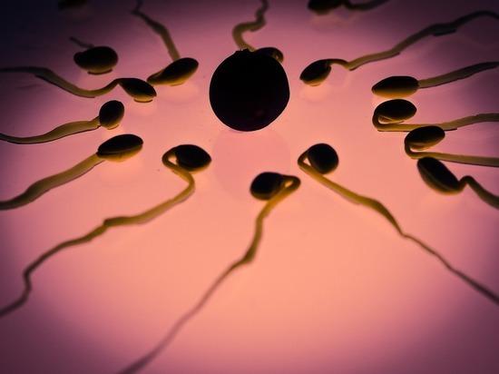 Назван процент переболевших мужчин с коронавирусом в сперме