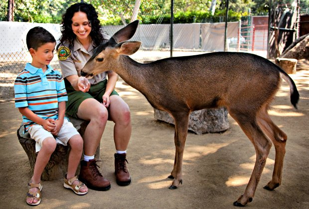 7 Best Zoos Near Los Angeles The La Zoo Is Just The Beginning Mommypoppins Things To Do In Los Angeles With Kids
