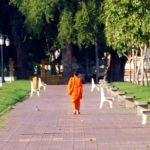A Cambodian monk takes a cool walk through the park.