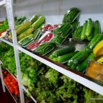 A shelf of fresh produce at Veggy's Phnom Penh.