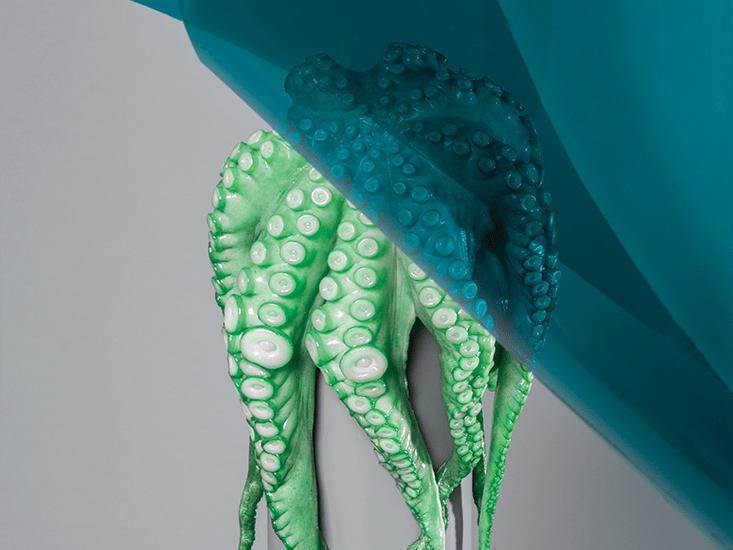 Vanderbilt_BR-squid