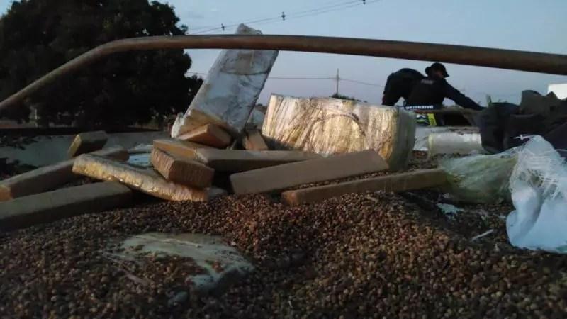 PMRv do MS apreendeu 36,5 toneladas de maconha em meio à carga de soja – Foto: Ministério da Justiça/Divulgação/ND