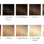 How To Decode The Hair Color Numbering System Glamot Com