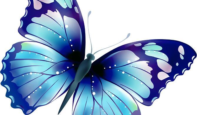 leptir za sastanke s leptirima dte pretraga energije