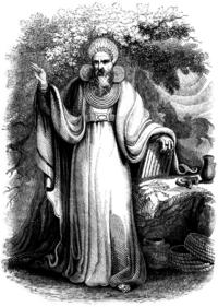 Image result for druid