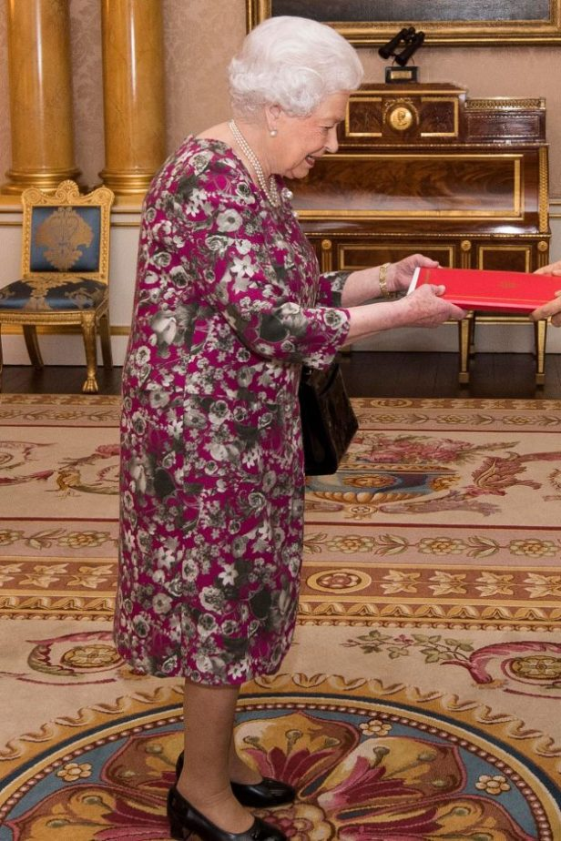 The Queen suffers awkward fashion faux pas as she meets High Commissioner of the Federal Republic of Nigeria