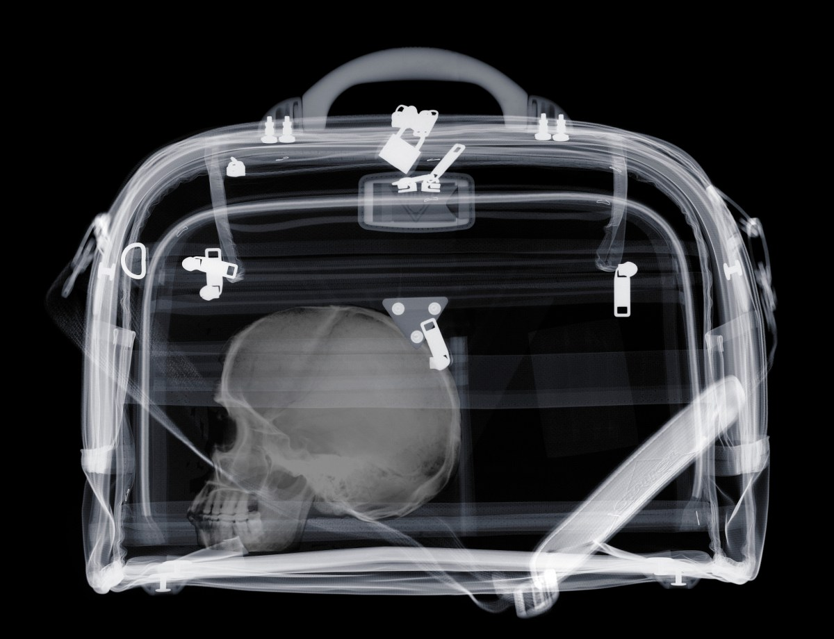 Man Arrested at Airport For Having Human Skull in Luggage | Travel + Leisure