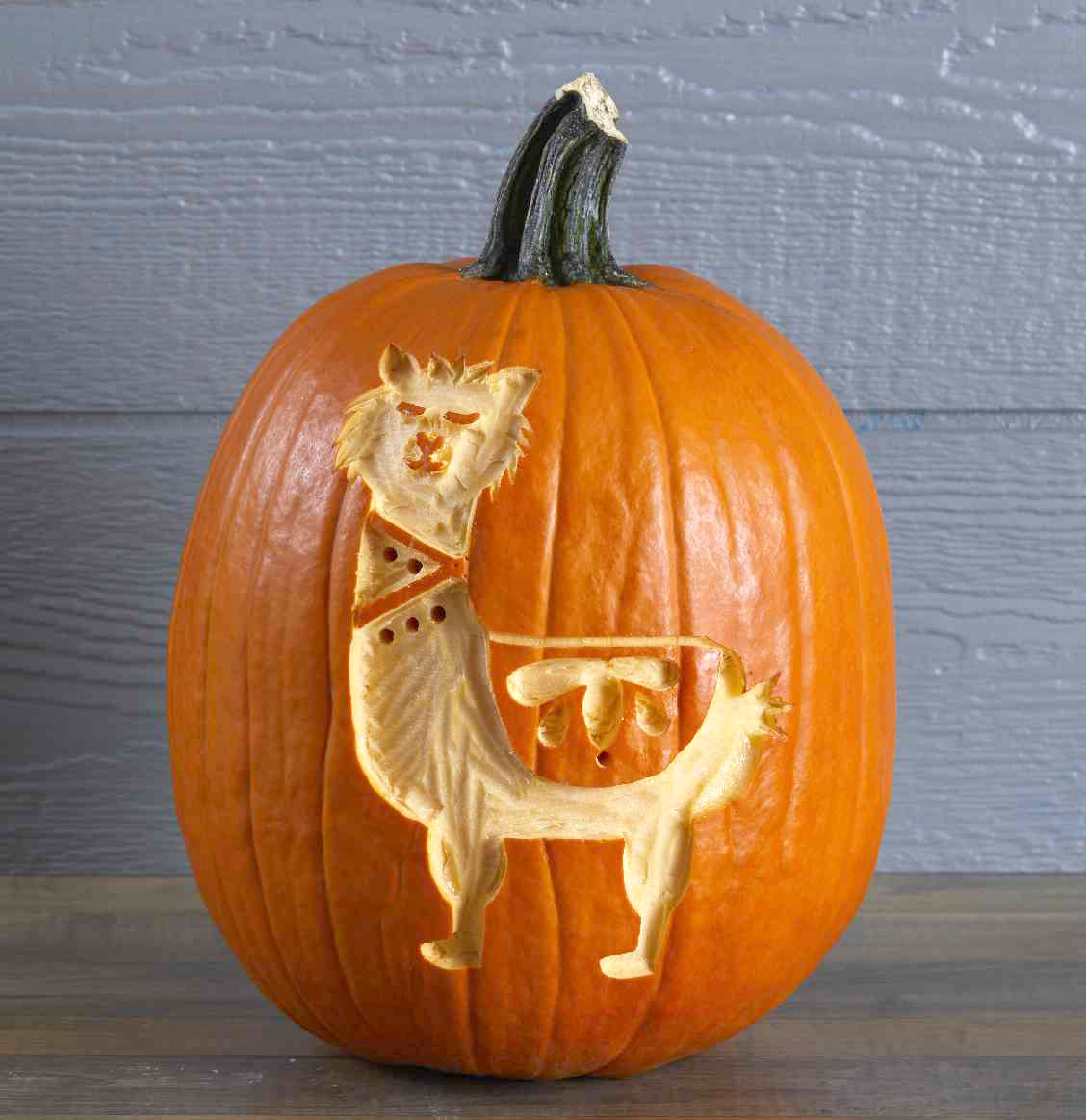 Pumpkin Carving Patterns Amp Templates