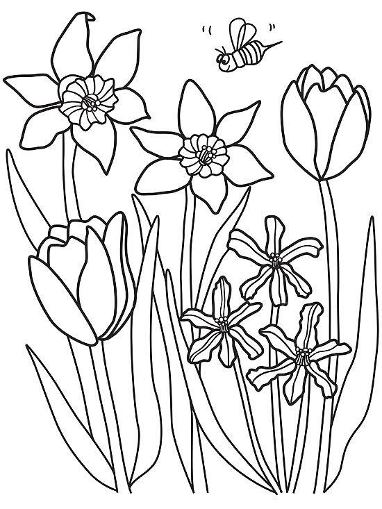 Printable Spring Coloring Pages | Parents | spring flower coloring pages