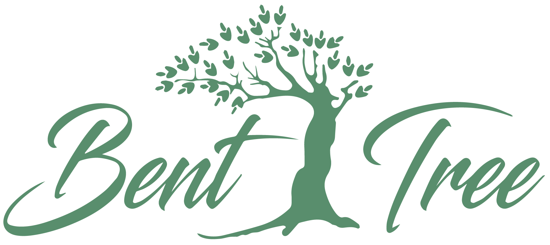 Bent Tree and Opus Creo – A Match Made in Heaven