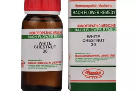 Best wild flowers white chestnut bach flower essence wild flowers white chestnut bach flower essence these flowers are very beautiful here we provide a collections of various pictures of beautiful flowers charming mightylinksfo