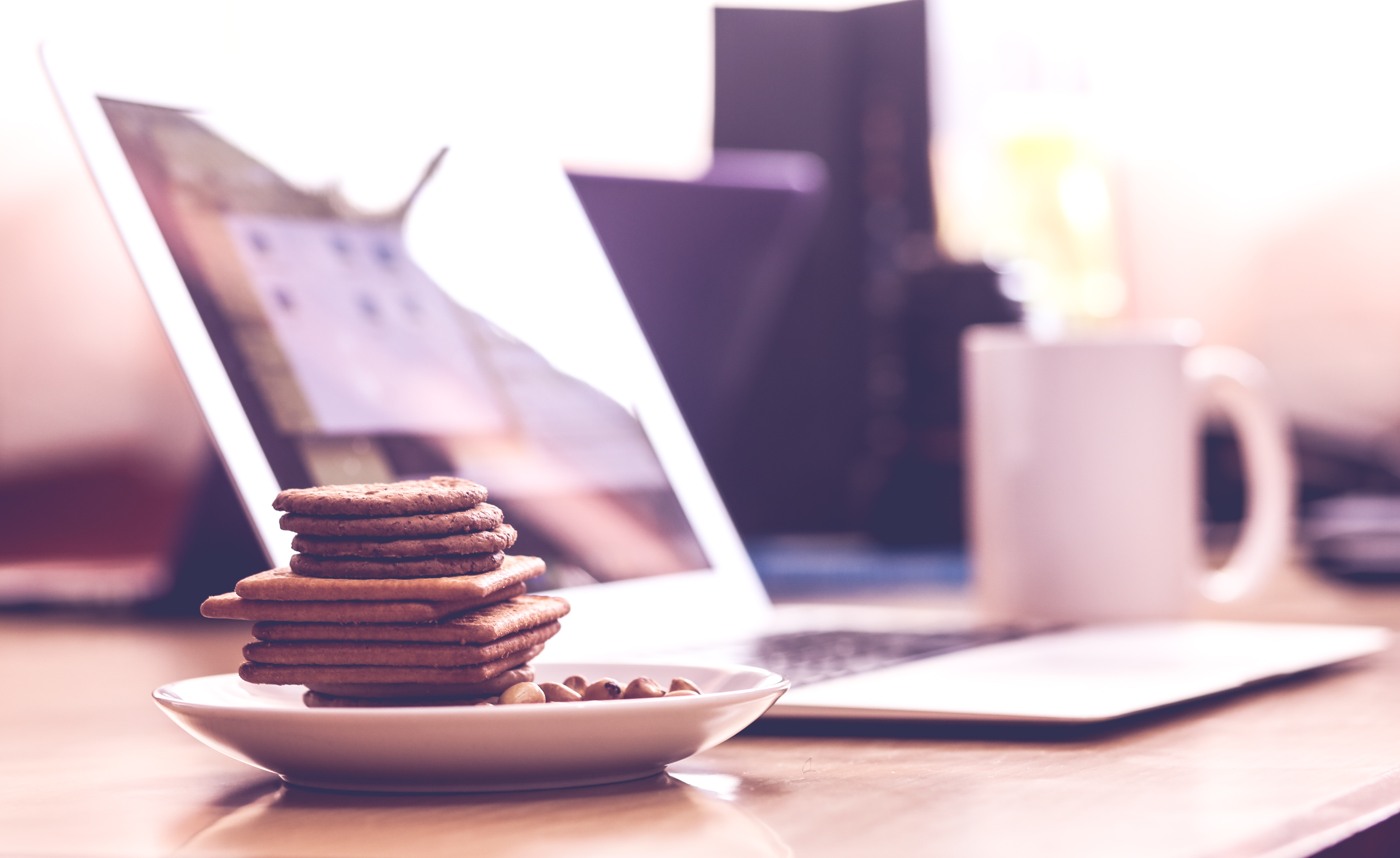 Biscuits In White Saucer Free Stock Photo