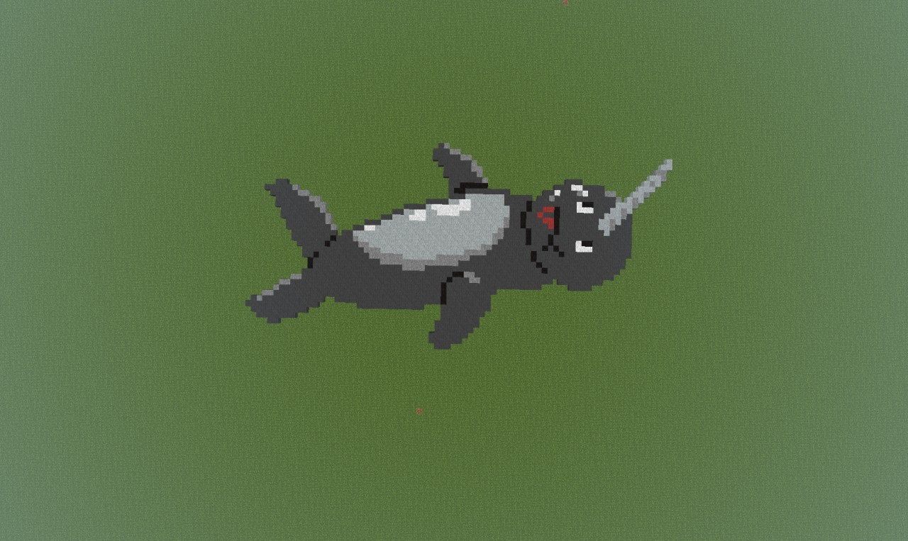 Derpy Narwhal Minecraft Project