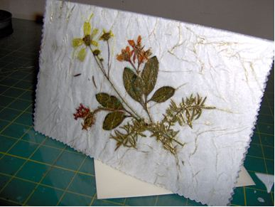 Antique Any Occasion Pressed Flower Card