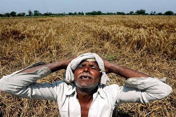 Image result for हरियाणा किसान संकट