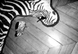 Natacha Ramsay-Levi's zebra Balenciaga shoes at my appartment, Paris. Photo Olivier Zahm