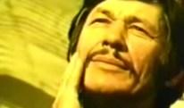 Doug Aitken TV Takeover / Charles Bronson Mandom Perfume Commercial (1976)