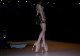 Posthuman form of fashion, Alexander McQueen Spring Summer 2010 show, Bercy, Paris….
