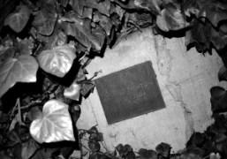 Helmut Newton 1920-2004, Chateau Marmont, Los Angeles. Photo Olivier Zahm