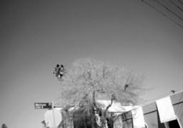 Melrose Place, Los Angeles. Photo Olivier Zahm