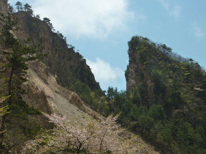 はっきりと山が割れていることが確認できます。この山にはよく見ると点々と小さな穴が壁面にいくつも見えますが、狸掘りの跡です。小さく見えますが、人、1人がやっと通れるくらいの穴が無数にあいていることがわかります。
