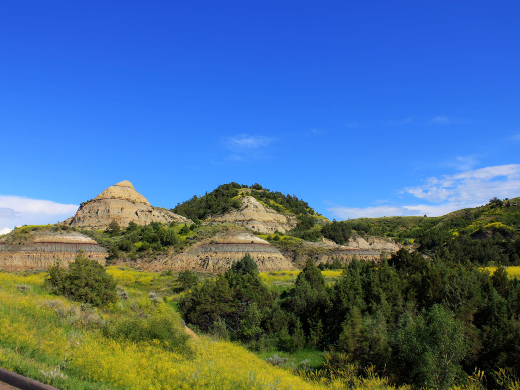 Insider S Guide To Theodore Roosevelt National Park