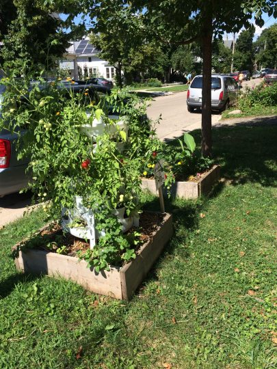 I Started Building Vertical Gardens For Classrooms In Milwaukee When  Looking For Good Ways To Teach Students About Composting And The Food Cycle.