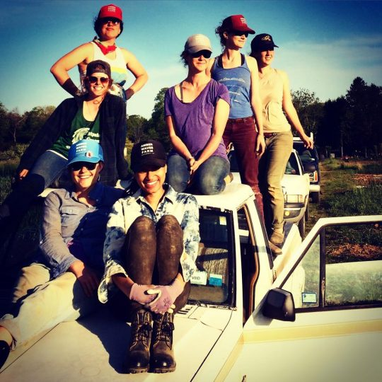 Seven women sit on a truck after a day of working in the fields at Amber Waves Farm.