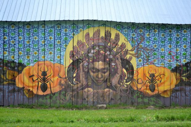 Artist Malena Handeen's completed Farm Art mural depicting a woman surrounded by many hands, as well as ants, flowers, and a patterned background.
