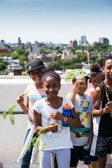 Children standing in a New York City rooftop garden munch on carrots just pulled from the garden.