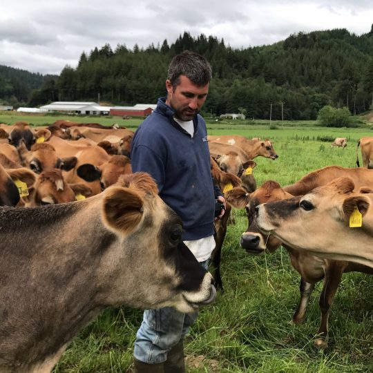 Pete Mahaffy stands among his herd of cows in the pasture.