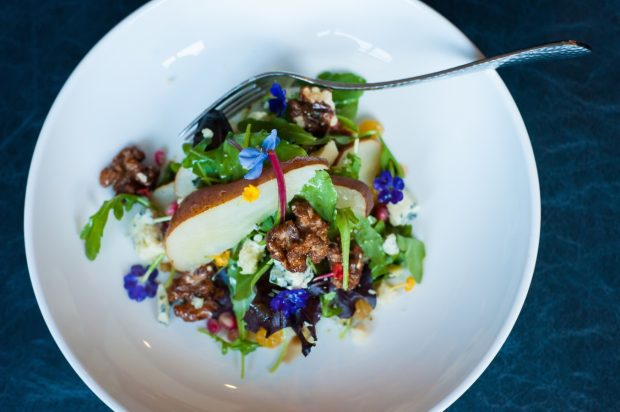 Overhead view of a colorful salad of apples, candied walnuts, microgreens, and edible blue flowers.