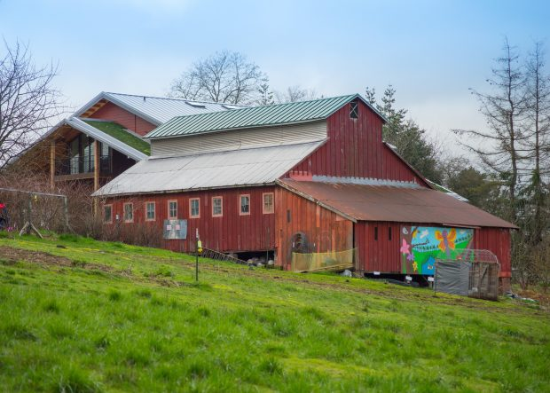 A large barn like building with colorful murals on the side.