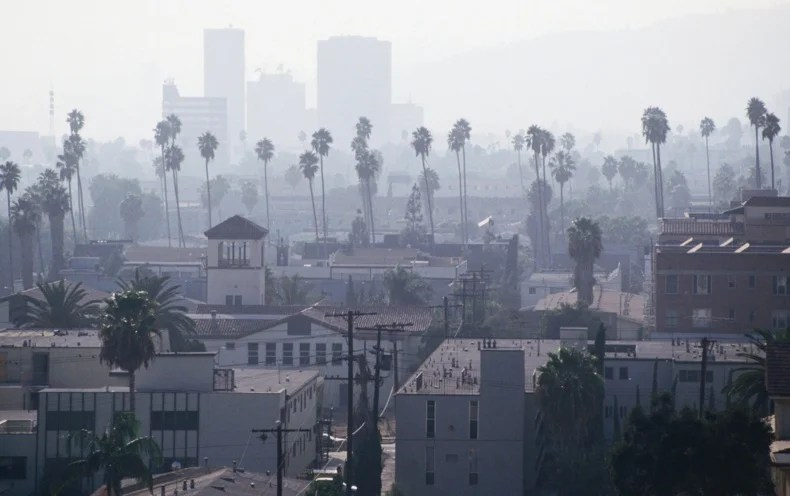 Landmark Air Pollution Studies Could Be Excluded by Proposed EPA Rule
