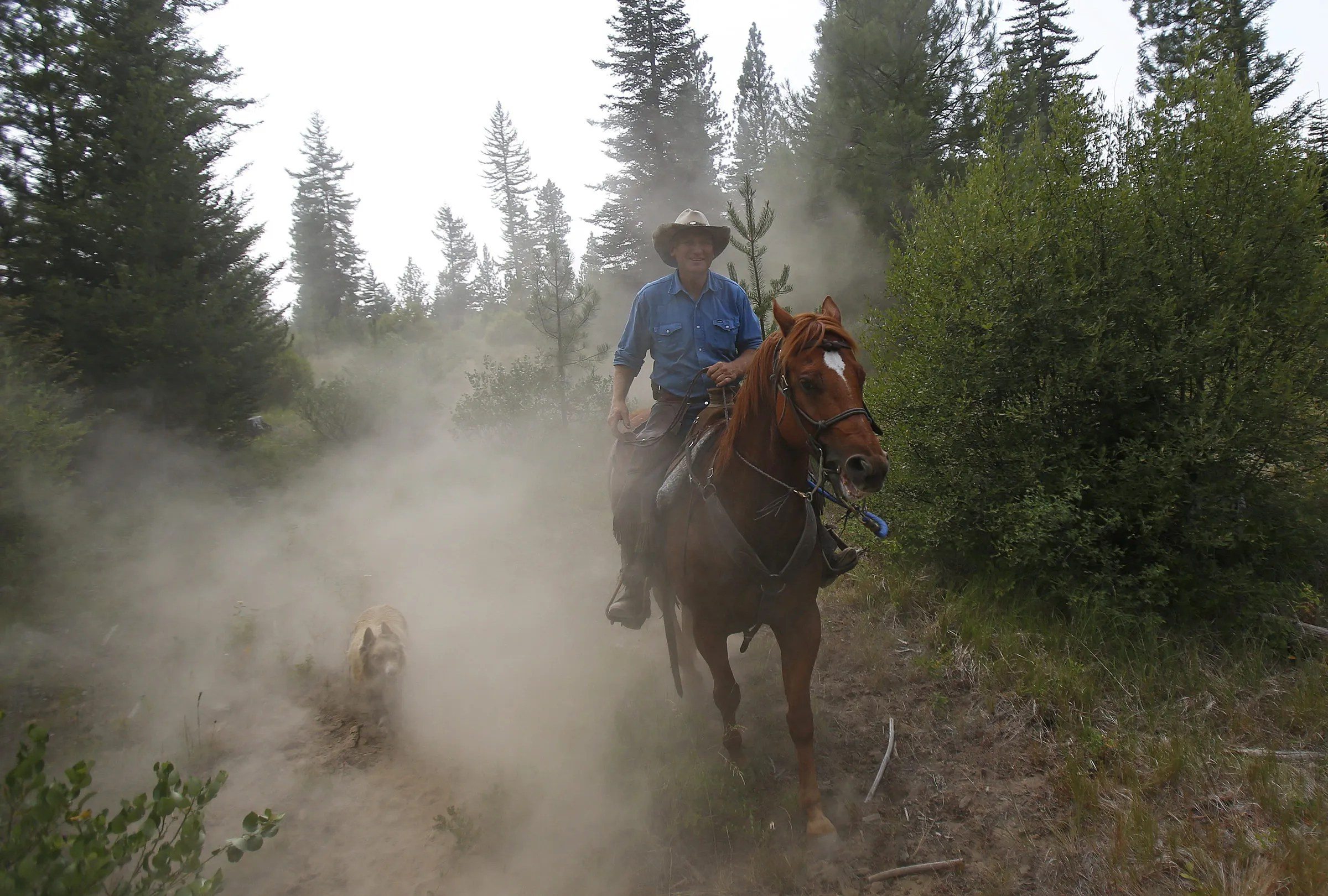 Range Rider Bill Johnson rides through rough terrain as he monitors an area that showed heavy wolf traffic earlier in the morning using GPS tracking data of collared wolves provided by the Department of Fish and Wildlife. (Sy Bean / The Seattle Times)