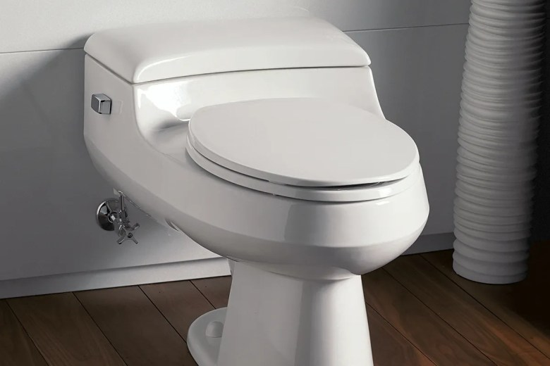 Image Result For How To Flush A Toilet Without Water In The Tank