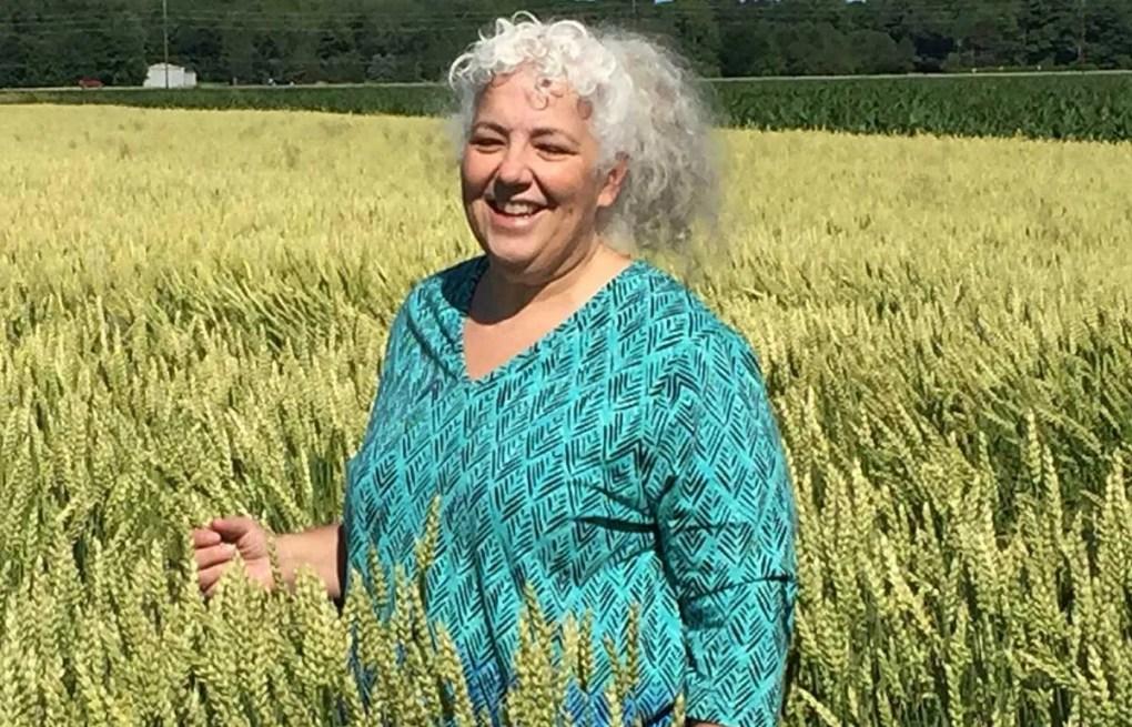 Career profile: 'Dr. Wheat' talks food science, genetic modification