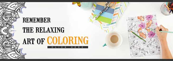 Adult Coloring Book - BIG