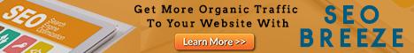 SEOBreeze Plugin. Get more organic traffic to your website.