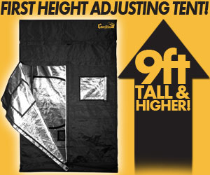 The tallest, thickest, strongest grow tents in the industry are the Gorilla Grow Tents.