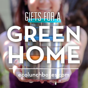 Give eco-friendly gifts this Christmas