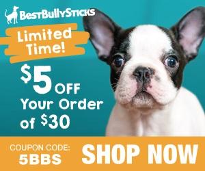 BestBullySticks.com
