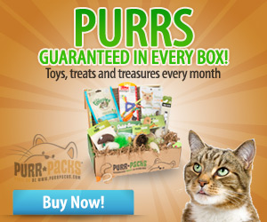 Purr-Packs are toys, treats and treasures delivered to your door every month!